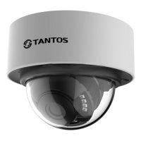 Фото Купольная IP-камера Tantos TSi-Dn226FP (3.6)