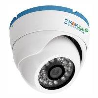Купить Купольная IP-камера БайтЭрг МВК-LIP 1024 Ball (3,6) в