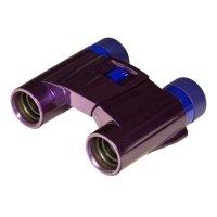 Купить Бинокль KENKO ULTRA VIEW 8x21 DH (Purple) в