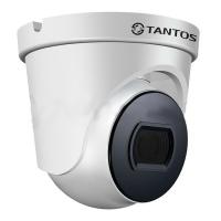 Фото Купольная видеокамера Tantos TSc-E2HDf (2.8)