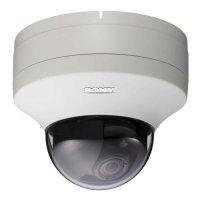 Купить Купольная IP-камера SONY SNC-DS10 в