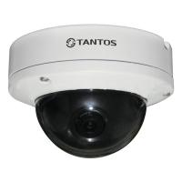 Фото Купольная IP-камера Tantos TSi-Dle21FP (3.6)