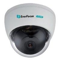Фото Купольная видеокамера EverFocus ECD900
