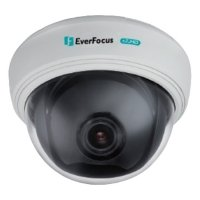 Фото Купольная видеокамера EverFocus ED910